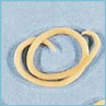 Cat Worm Picture Roundworm
