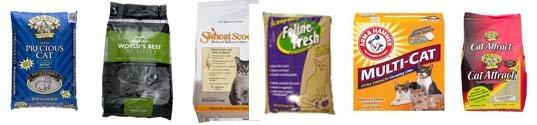 cat litter brands