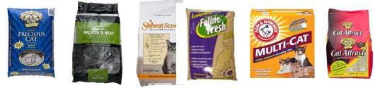 Cat Litter Brands And Reviews